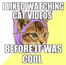 cat_videos